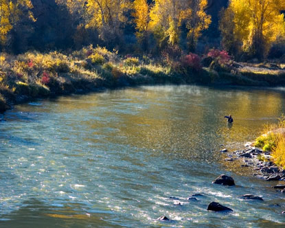 Go fish the republic of less for Fly fishing boise idaho