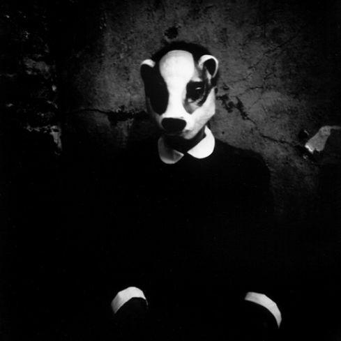 outsider photo nhung dang badger