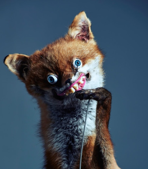 Puppet Foxy Charlie Tuesday Gates. Sing For Your Life.Foxy