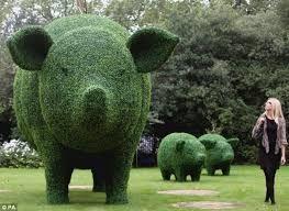 pig topiary