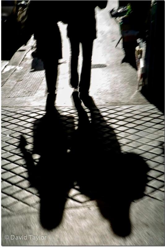 Shadow d taylor pdf